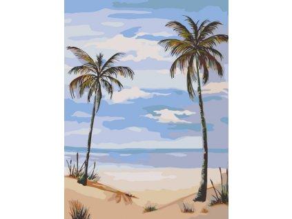 Malování podle čísel - DVĚ PALMY NA PLÁŽI (Rámování vypnuté plátno na rám, Rozměr 60x80 cm)