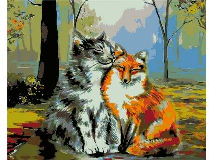Malování podle čísel - KOCOUR S LIŠTIČKOU (Rámování vypnuté plátno na rám, Rozměr 80x100 cm)