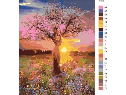 Malování podle čísel - SVÍTÁNÍ