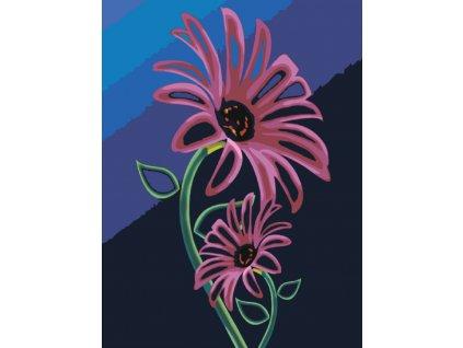 Malování podle čísel - RŮŽOVÉ ROSTLINKY (Rámování vypnuté plátno na rám, Rozměr 60x80 cm)