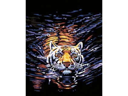 Tygr ve vodě1
