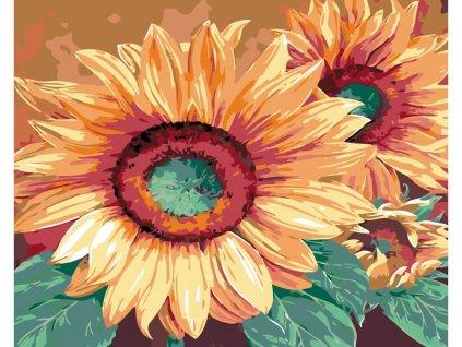 27020 malovani podle cisel zlute kvety slunecnice