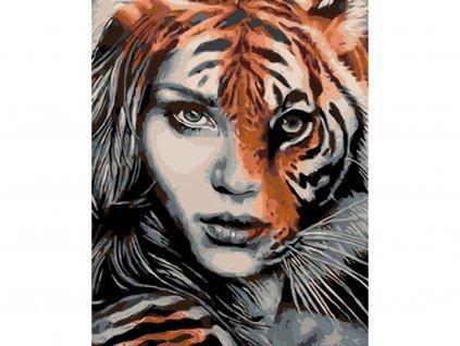 25326 2 malovani podle cisel tygri zena ramovani vypnute platno na ram rozmer 80x100 cm