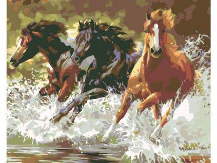 10452 malovani podle cisel kone ramovani vypnute platno na ram rozmer 80x100 cm