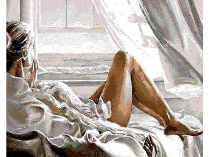 Malování podle čísel - POHLED Z OKNA (Rozměr 80x100 cm, Rámování bez rámu a bez vypnutí plátna)