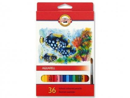 maluješ malování podle čísel příslušenství 6