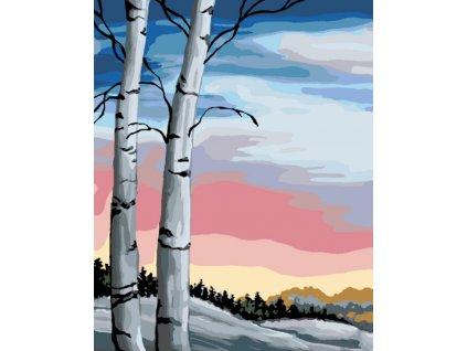 Malování podle čísel - BŘÍZY (Rámování vypnuté plátno na rám, Rozměr 80x100 cm)