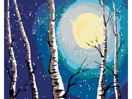 Malování podle čísel - BŘÍZY MĚSÍC A PADAJÍCÍ SNÍH