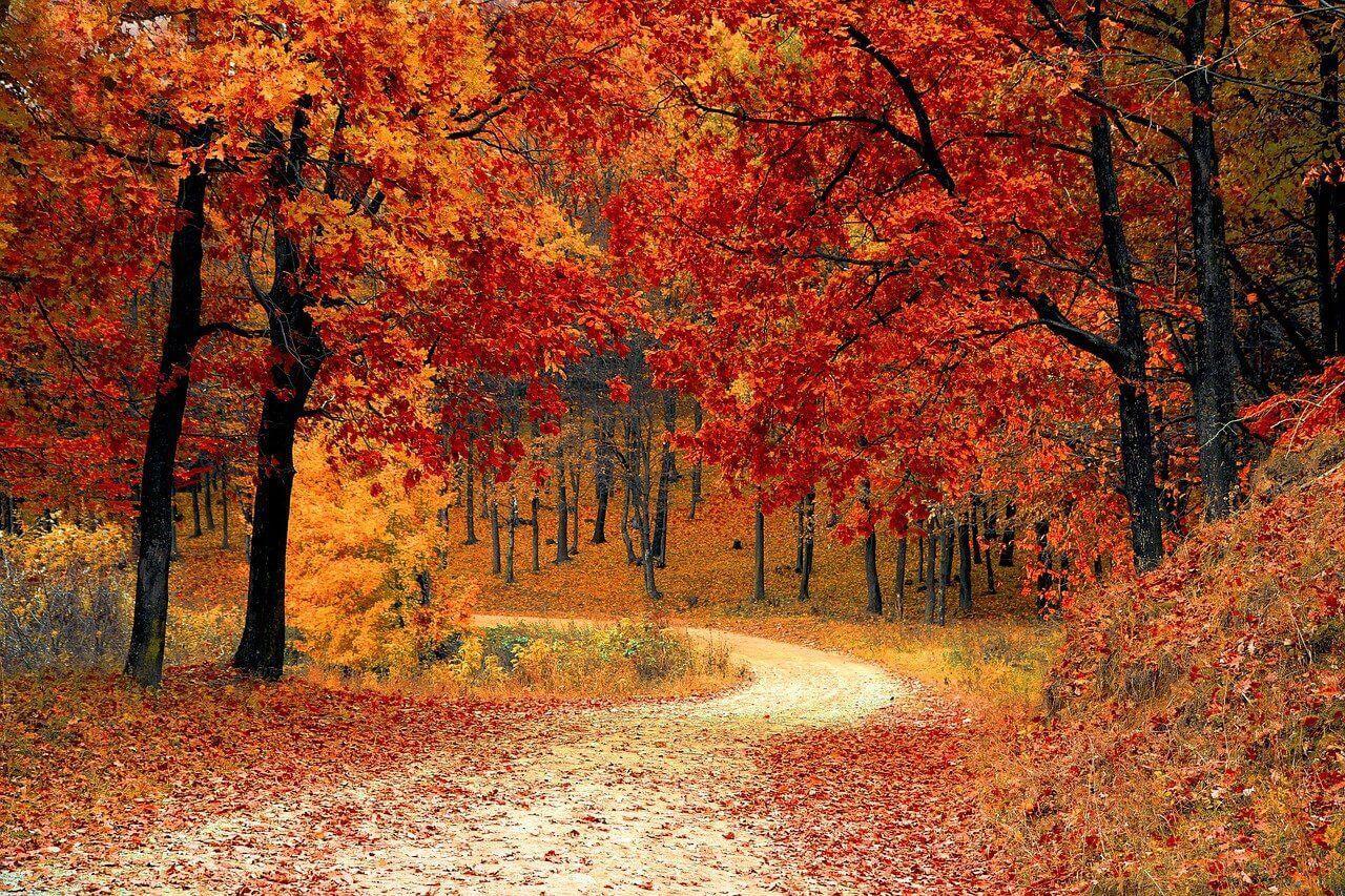 Užijte si podzim bez starostí