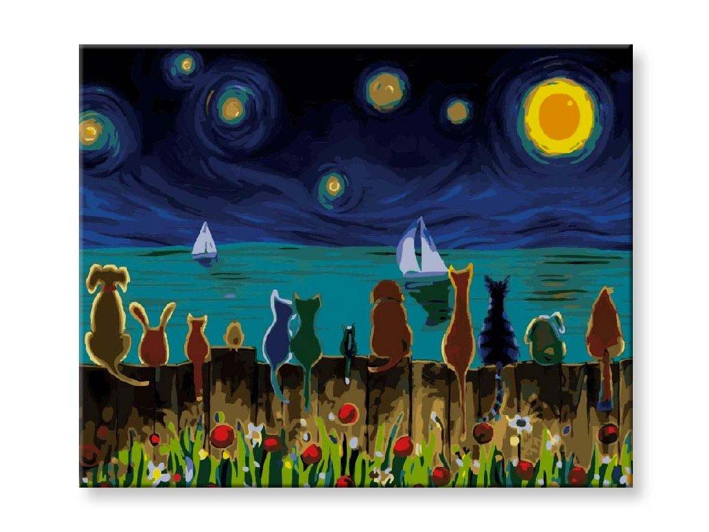 Kočky za soumraku zírající na plachetnice