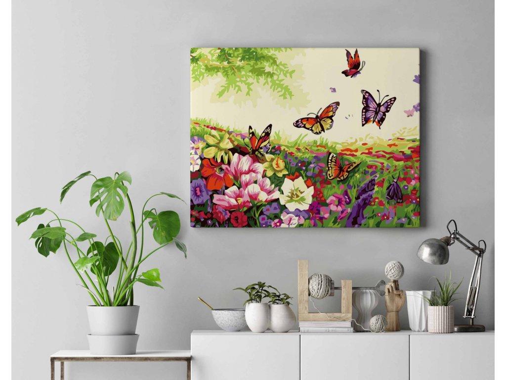 Malování podle čísel - Louka s motýli