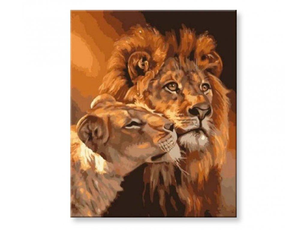 Lví oddanost