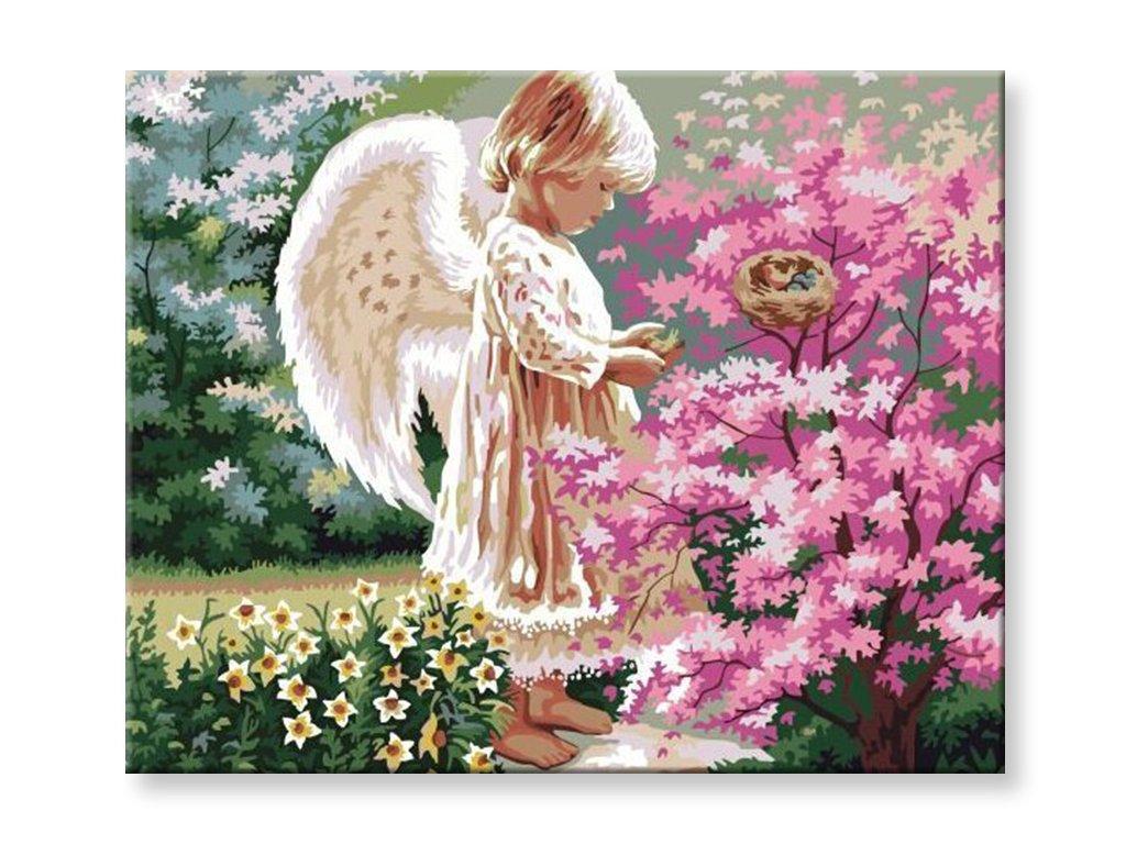 Malování podle čísel - Malý anděl