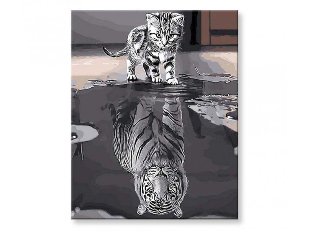 Tygr a Kočka