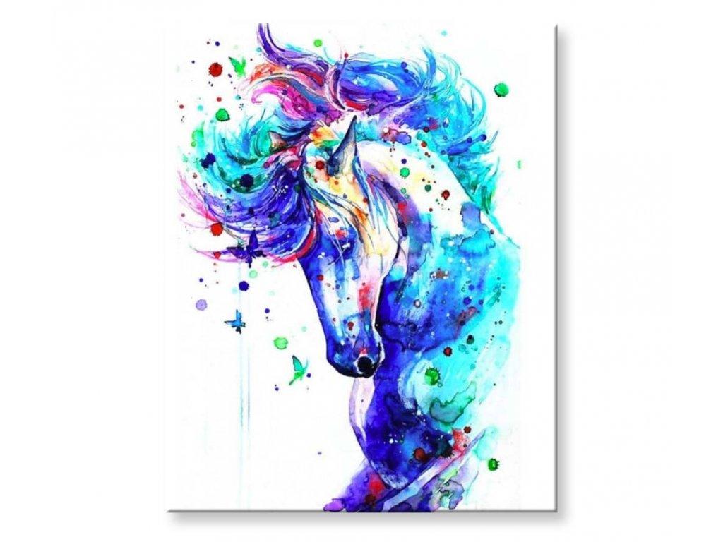 Barevný kůň