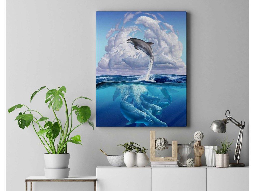 Malování podle čísel - Delfíni