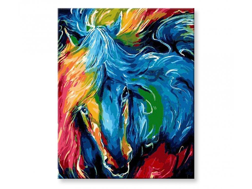 Malování podle čísel - Barevný kůň