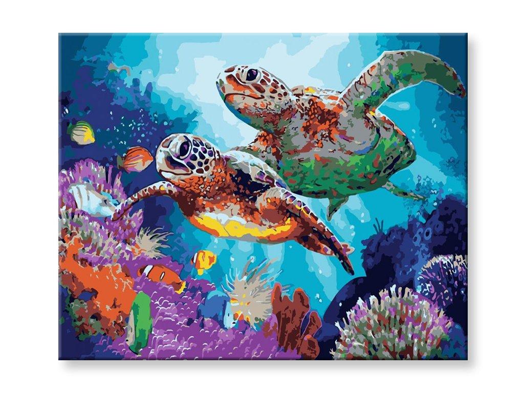Malování podle čísel - Želvy