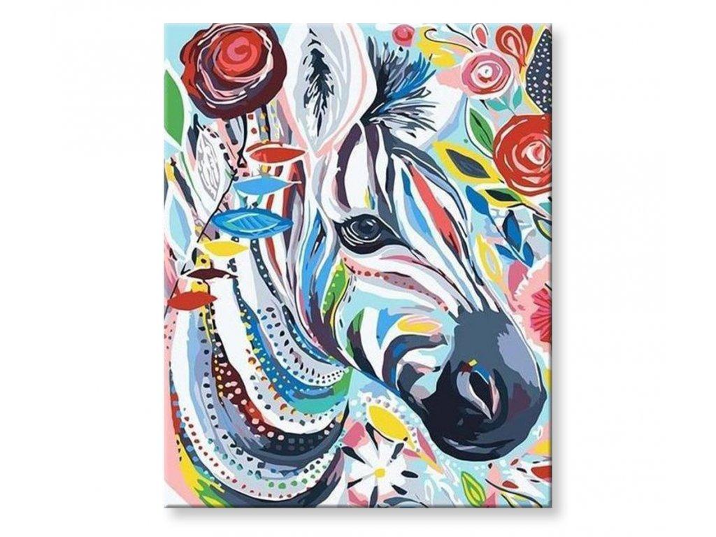 Malování podle čísel - Barevná zebra III