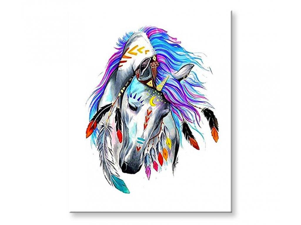 Indiánský kůň