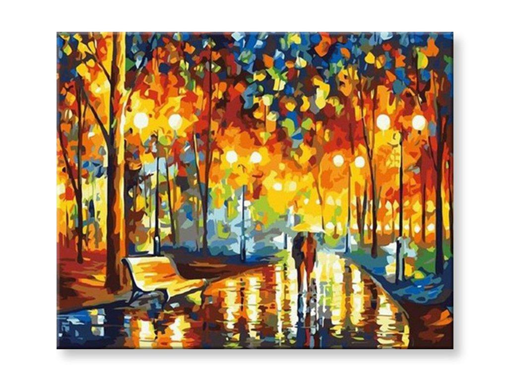 Malování podle čísel - Procházka noční parkem