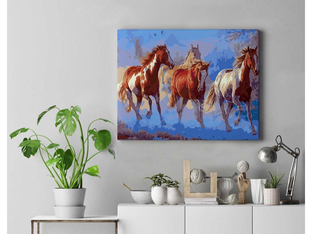 Malování podle čísel - Stádo koní