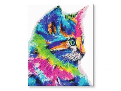 Malování podle čísel - Barevná kočka