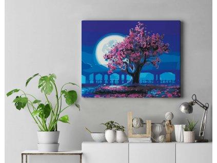 Malování podle čísel - Kouzlo luny