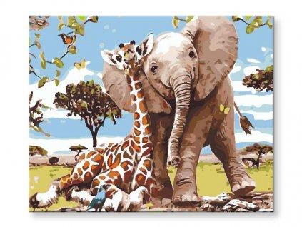 Slůně a žirafa