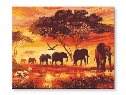 afrika obraz s čísly