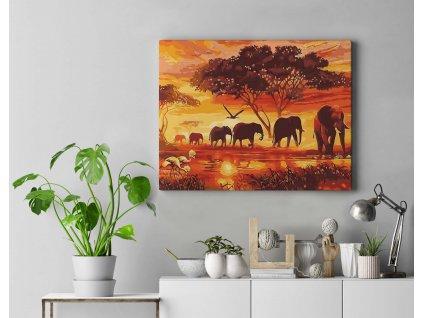 Malování podle čísel - Africká scenérie