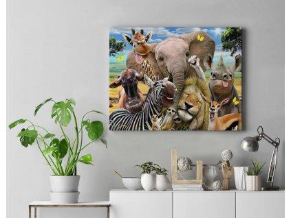 Malování podle čísel - Veselá zvířata