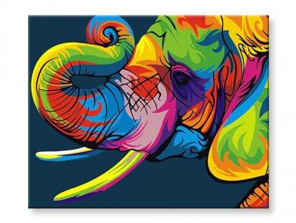Malování podle čísel - Barevný slon