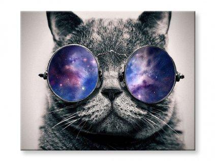 Malování podle čísel - Kočka s brýlemi