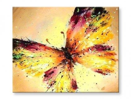 Malování podle čísel - Motýl