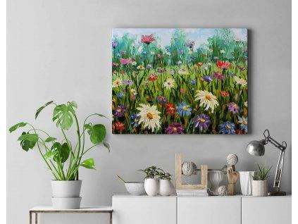 Malování podle čísel - Louka plná květin