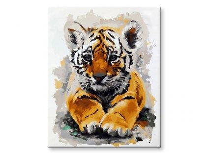 Malování podle čísel - Tygřík