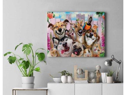 Malování podle čísel - Veselá zvířata II