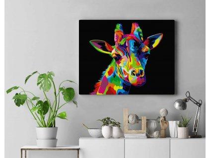 Malování podle čísel - Žirafa v barvách