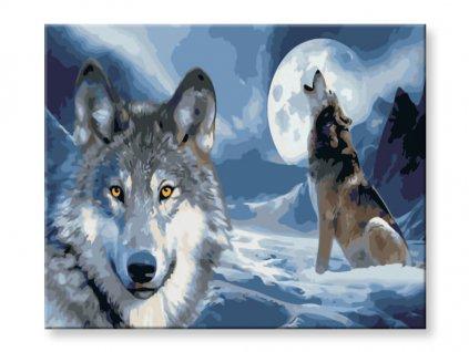 malovani-podle-cisel-vlci-za-uplnku