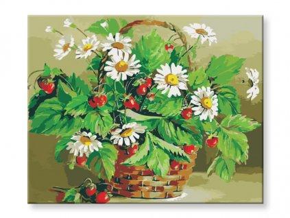 malovani-podle-cisel-jahody-a-kopretiny