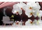 Fototapety orchideje
