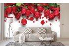 Fototapety růže
