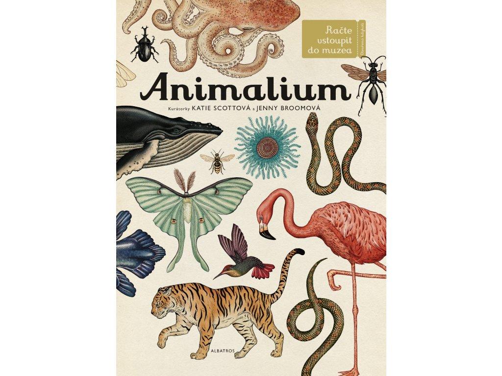 Animalium Jenny Broomová