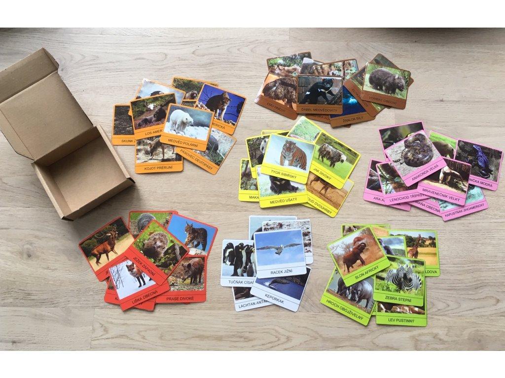 Didaktické kartičky - zvířata světa