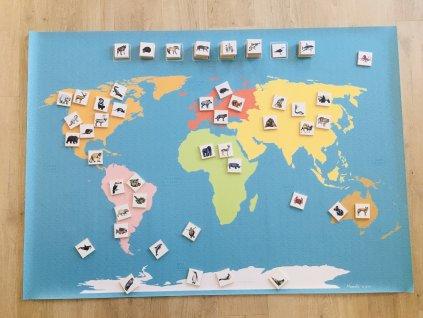 Mapa světa a její zvířecí obyvatelé - A1