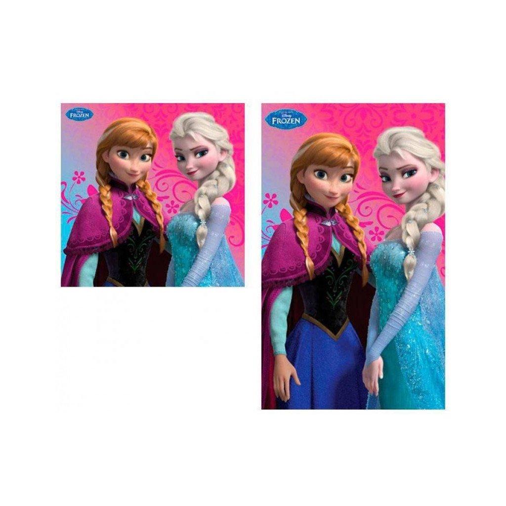 duo de serviettes mains et visage disney la reine des neiges anna elsa