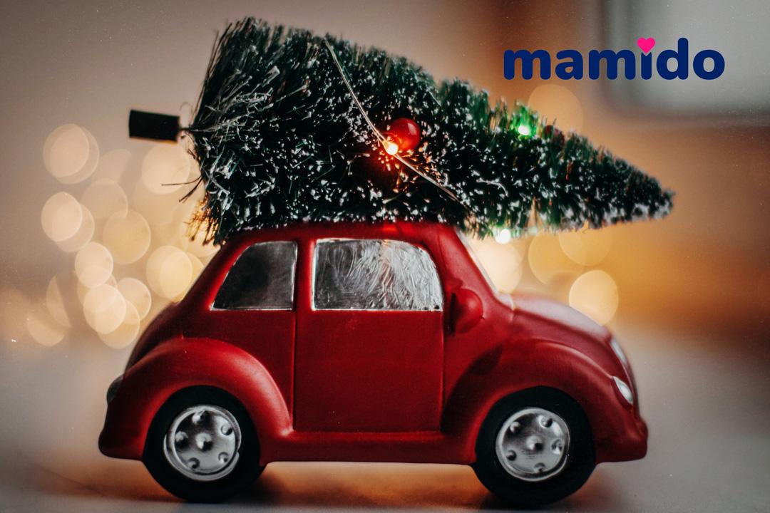 Garancia-doručenia-do-Vianoc