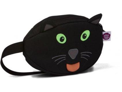 ledvinka panther3