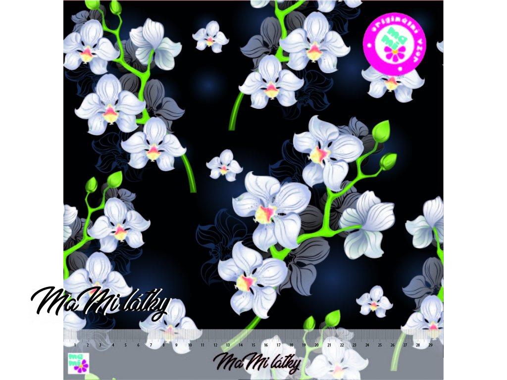 bilá orchidej 30x30 nahled